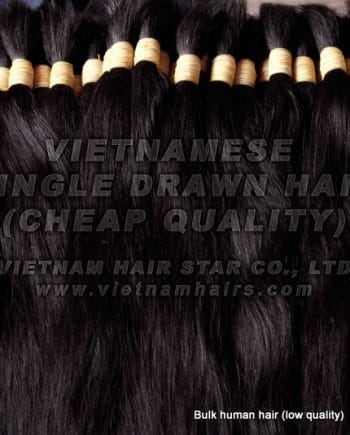 Cheap Vietnamese Single Drawn Hair